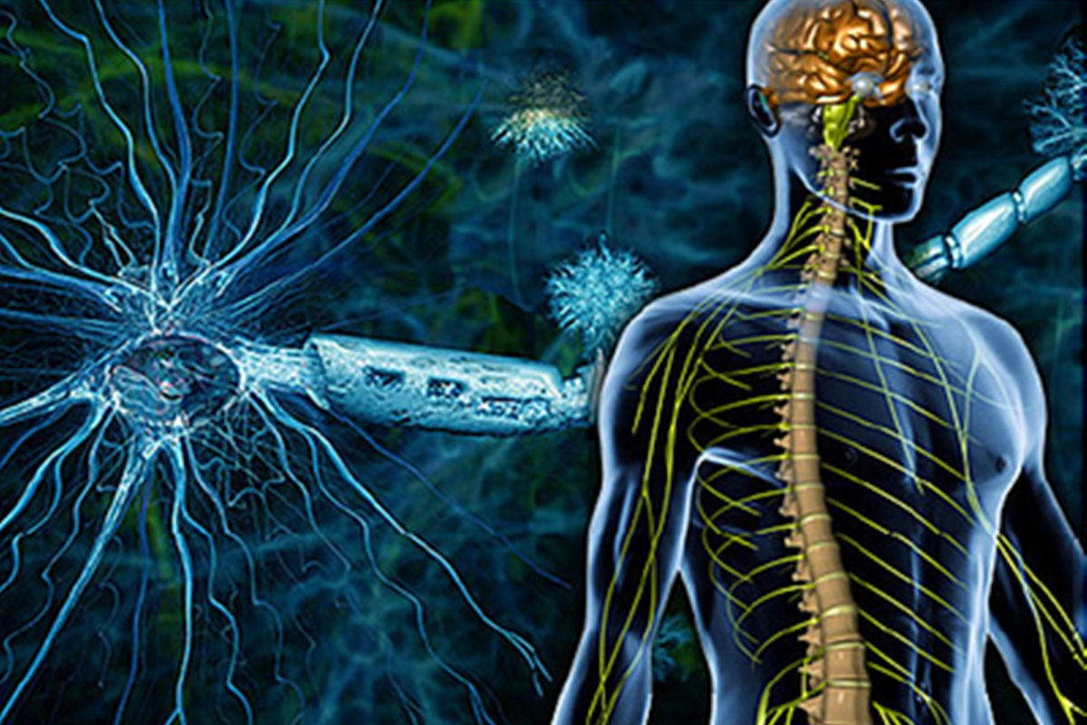 Radiology Makes Diagnosing Multiple Sclerosis Easier