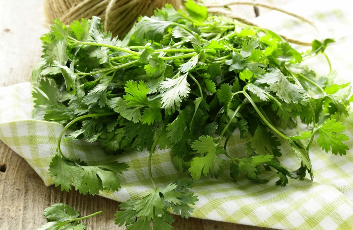 7 Healthy Reasons to Eat Cilantro; Not Just For Salsa