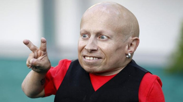 Austin Powers actor Verne Troyer Heads to Rehab