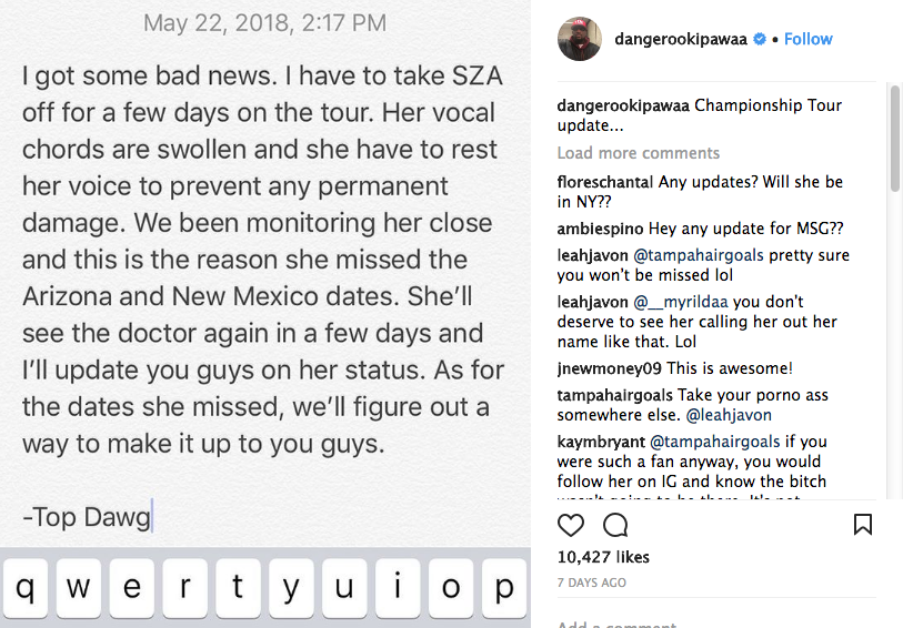SZA Gives Update on State of Her Vocal Ability