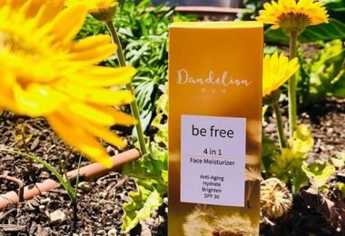Dandelion Sun The Cure to Protecting Your Skin